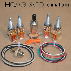 wiring humbuckers product categories hoagland custom page 3 rh hoaglandcustom com Sony Wiring Harness Flying V Guitar Wiring